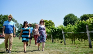 five people walking through a vineyard