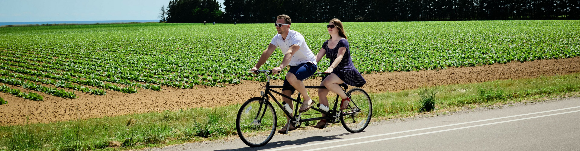 Man and woman riding bike built for two along lakeside field