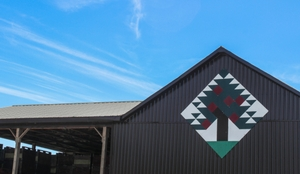 Art design on side of barn